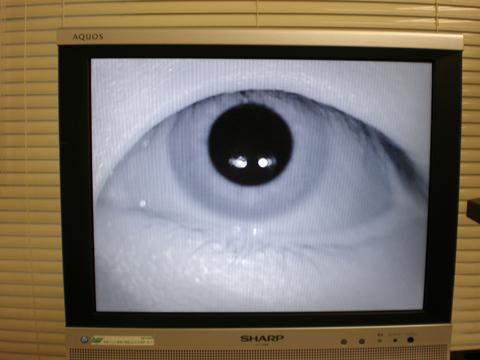赤外線CCDカメラの画像